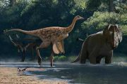 Carleton-led Research Group Discovers New Ostrich-Like Dinosaur from Alberta