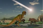 Carleton Researcher Determines Jurassic Park Approach is not Best Method of Conservation
