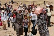 Carleton to Host Workshop on the Global Refugee Regime