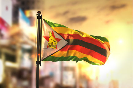 Read more about: Experts Available Regarding the Zimbabwe Military Coup
