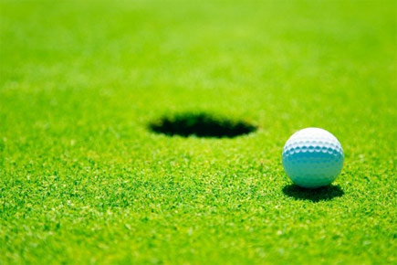 Read more about: Ravens Golfing
