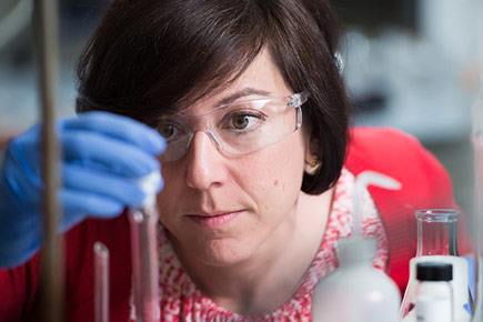 Read more about: Maria DeRosa's DNA Research