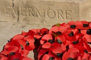 Hot Topic: Remembrance Day