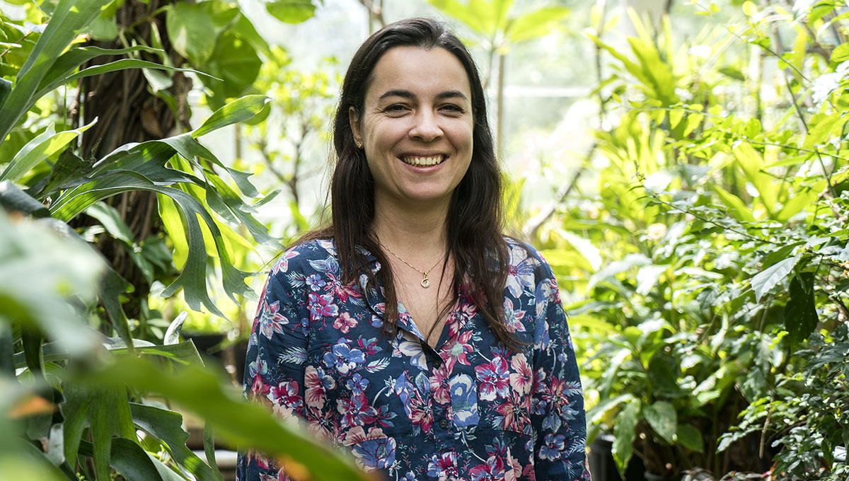 Visiting scholars: Eliana Cazetta