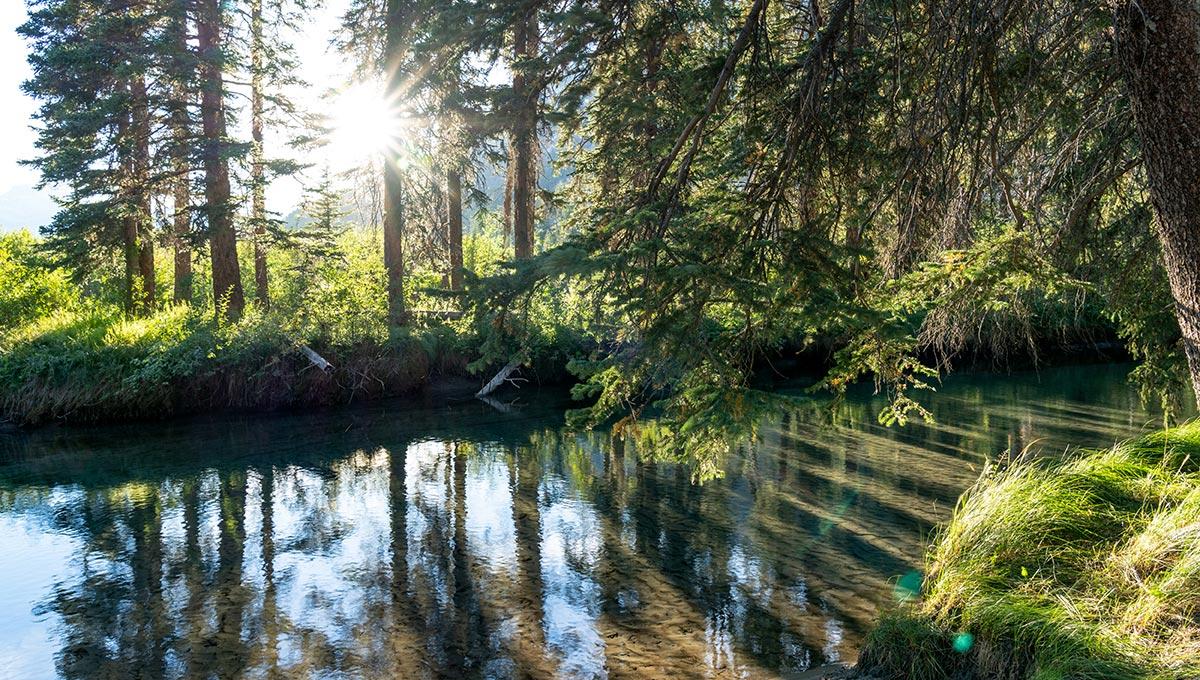 Banff National Park, Canadian Rockies, Alberta, Canada