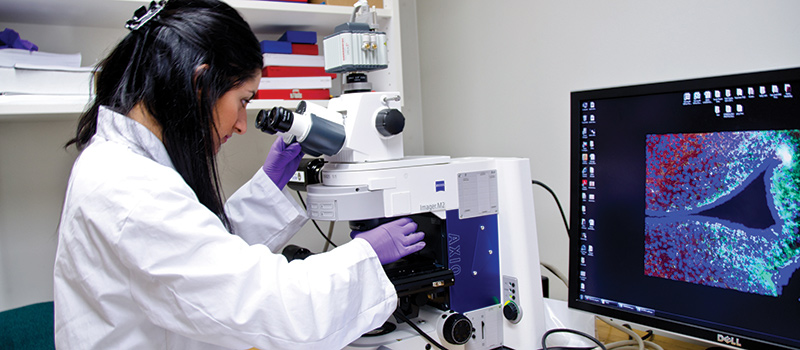 From Theory to Practice: The First NRC-CU Biotech Internship is Underway