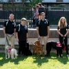 Read more about: Carleton therapy dogs featured in the Globe and Mail.