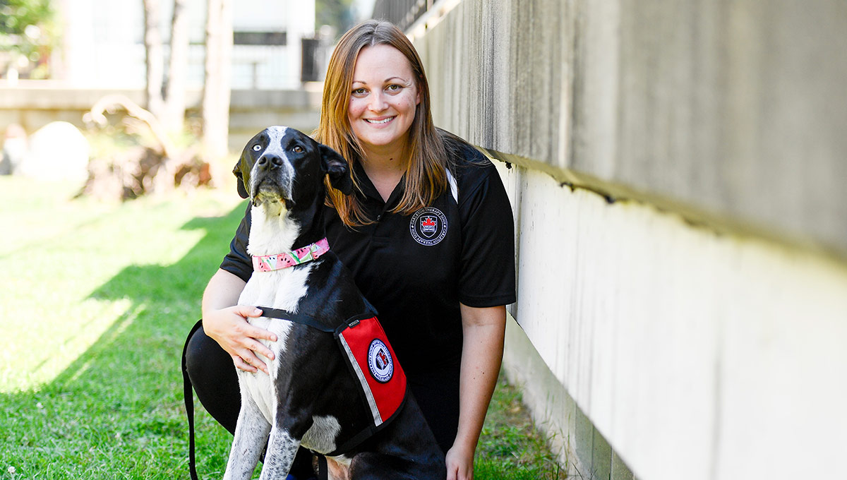Carleton Expands Therapy Dog Program