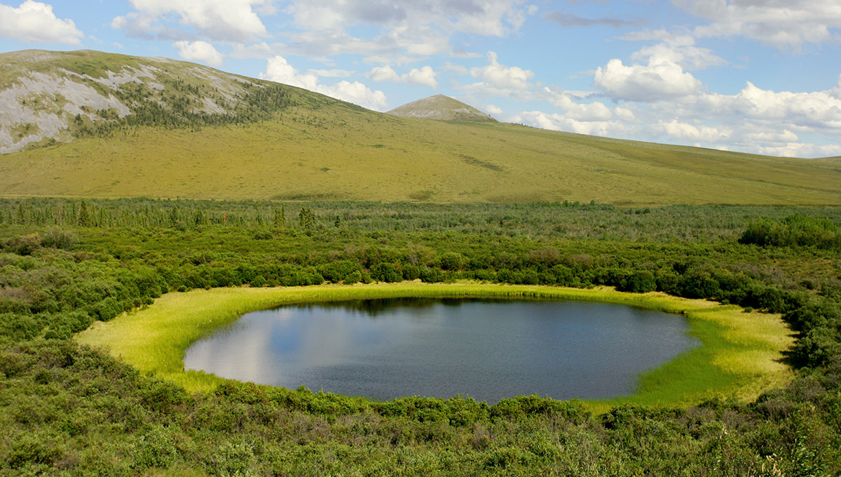 A photo of a permafrost lake in the Artic Circle in Canada. The lake is surrounded by a field of grass and hills in the background.