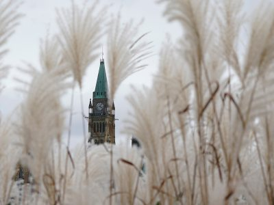 Photo for the news post: Rookie MPs face unique challenges in the 44th Canadian Parliament