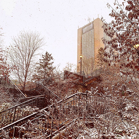 A photo of the first Fall 2019 snowfall which impacted the Carleton University campus. An outdoor stairway to the quad can be seen with Dunton Tower visible in the distance.