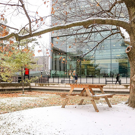 A photo of an empty bench in the quad on the Carleton University campus.