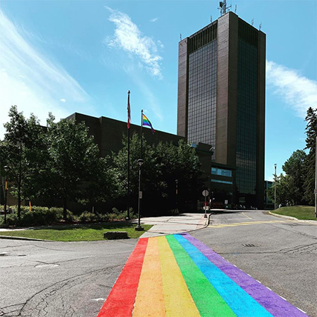 A photo of the rainbow painted onto Library Road in honour of Pride Week.