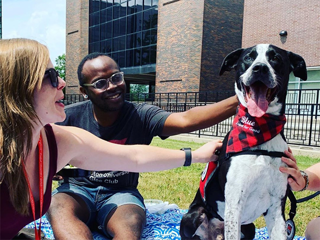 Photo of Carleton University students sitting in the quad and interacting with a therapy dog.