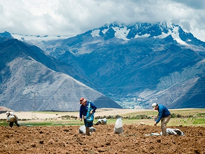 Photo for the news post: Students Working to Improve Food Security in Peru