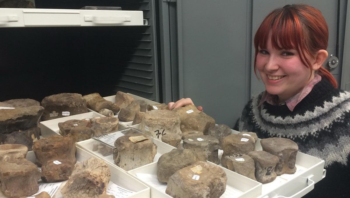 Carleton University undergraduate student, Brigid Christison, has begun cataloguing Canada's first dinosaur fossils.
