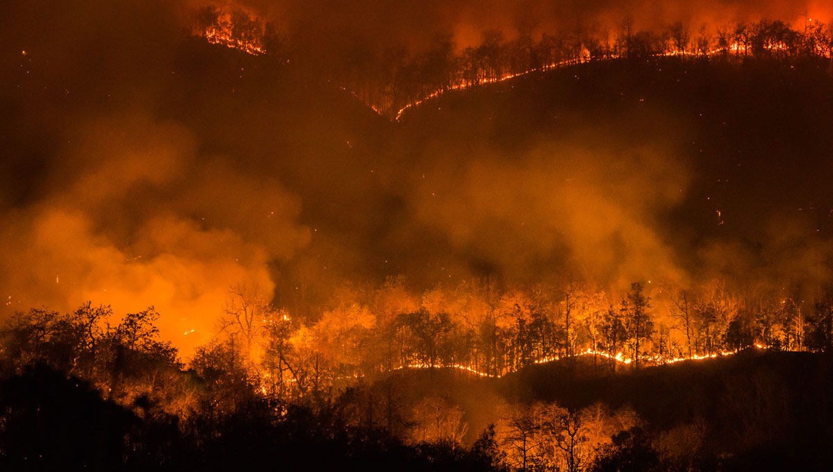 Carleton researchers are analyzing the thousands of variables that influence the direction and intensity of forest fires to prevent them from occurring.