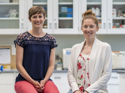 Photo for the news post: Pollutants and Diabetes: Carleton Lab Makes New Discoveries