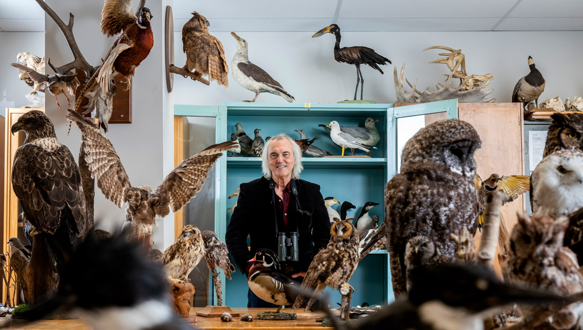 Carleton University Biology Prof. Michael Runtz, pictured here in a lab surrounded by taxidermied animal samples, has published Algonquin Wild, a new book celebrating the 125th anniversary of Algonquin Provincial Park.