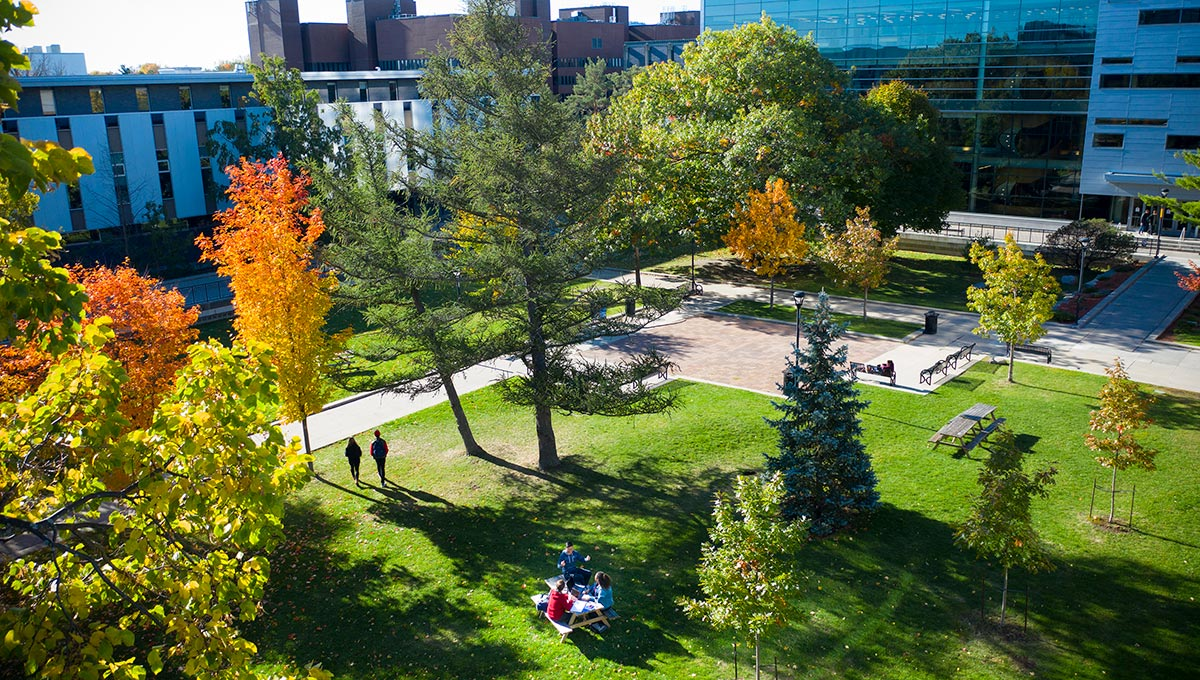 The Quad at Carleton University