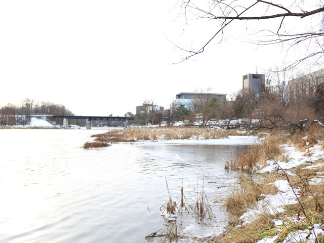 A shot of the Rideau River with RIchcraft Hall and Dunton Tower in the distance.