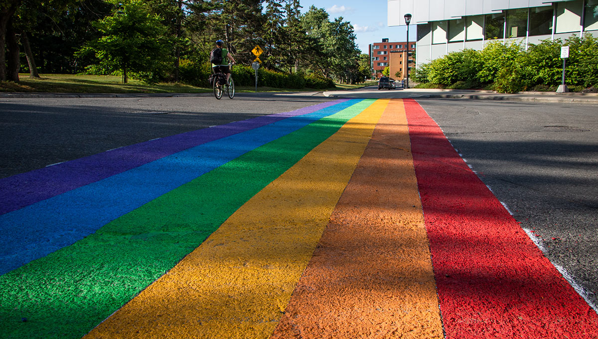 Photo of the The Carleton University Students' Association and the Gender and Sexuality Resource Centre worked with the university to install a rainbow-coloured crosswalk on Library Road in celebration of Capital Pride Week in Ottawa.